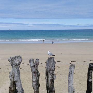 Was für ein Strand hier, in St. Malo