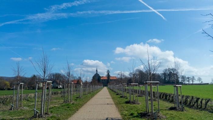 Der Blick zurück auf der Lindenallee zum Rittergut