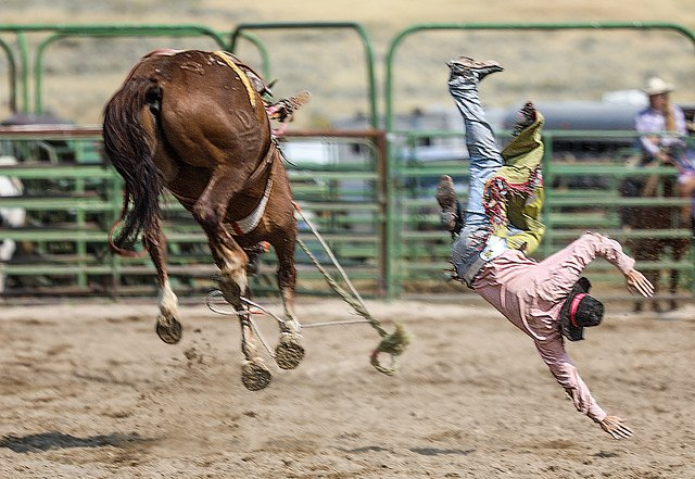 Rider flying off horse during rodeo