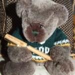 Desmond Bear