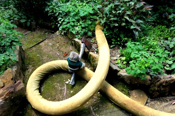 Slaying the serpent!