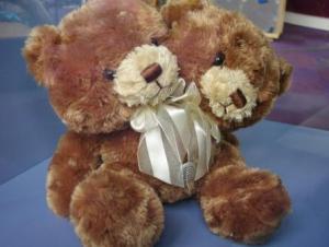 What an unfortunate bear!