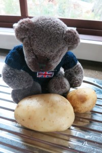 Oh no, mashed potato fot tea.