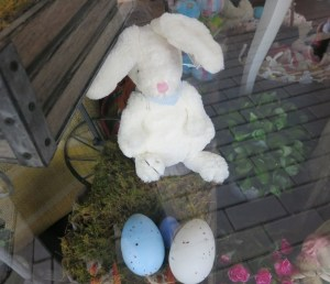 THIS BUNNY PROMISED ME HE WOULD VISIT MY HOME IN THE BLUE MOUNTAINS.