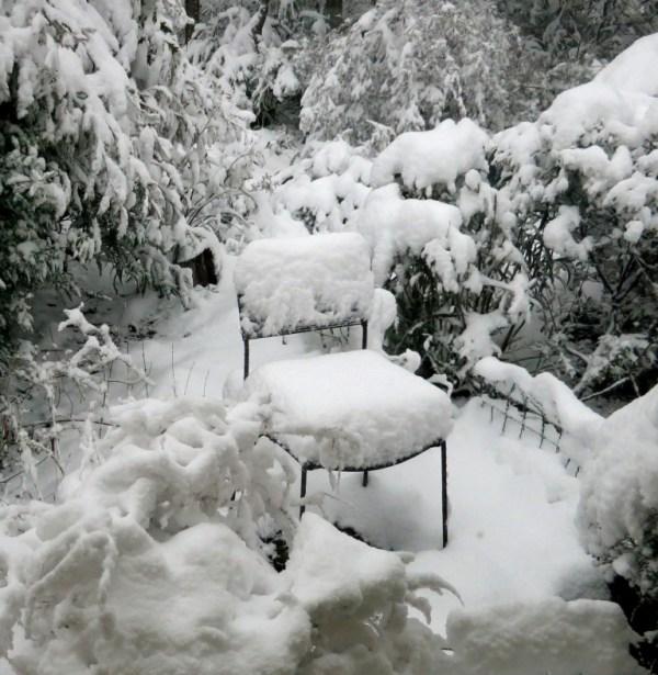 Snowy seat at Blackheath NSW