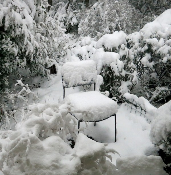 Snowy seat at Blackheath NSW