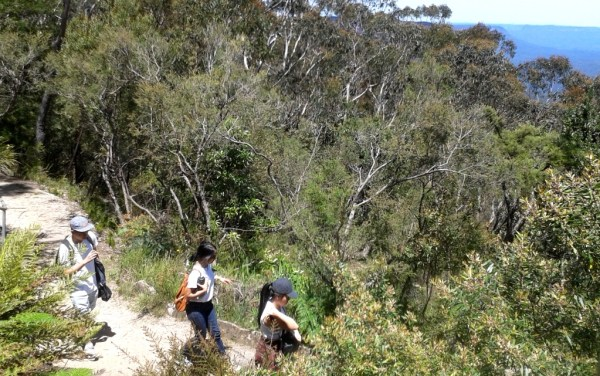 Tourists setting out for a walk at Wentworth Falls from Conservation Hut.