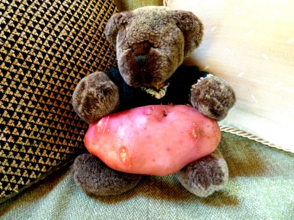 Editor Des and his humungous potato