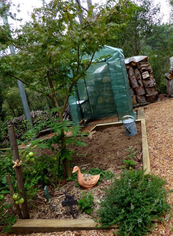 Greenhouse under construction