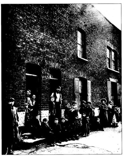 Slums in London's  Stepney where Eliza Bryan and her mother lived.