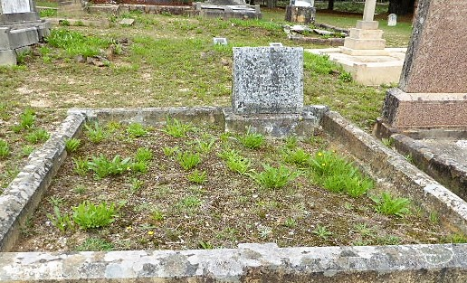 The mother of Linda Loosley is buried here.