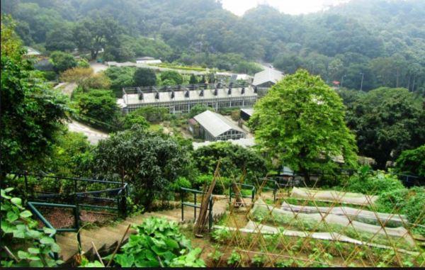 Kadoorie Farm