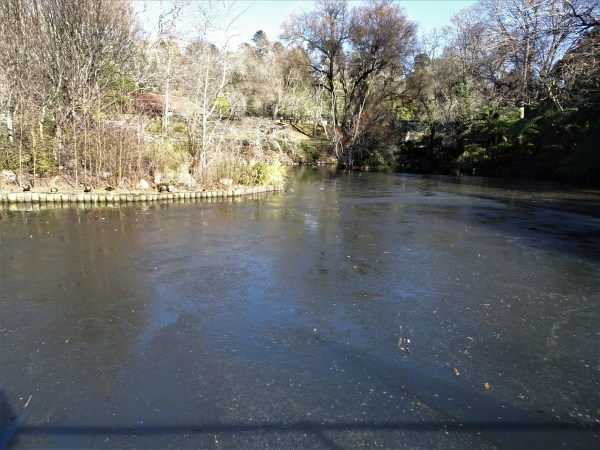 Frozen Blackheath Duck Pond