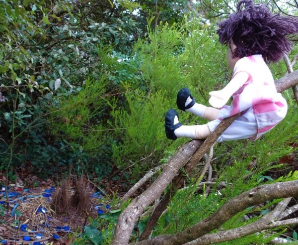 Milly watching the satin bowerbird's ower.
