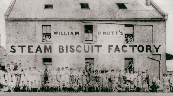 Home of the Milk Arrowroot  Biscuit