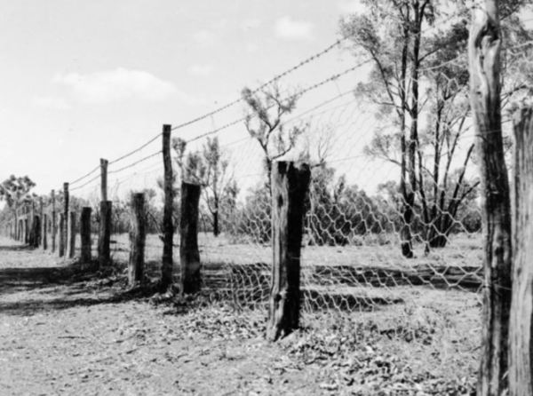 The Dog Proof Fence