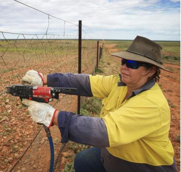 Phyllis Ainsworth, boundary rider on the dingo proof fence.
