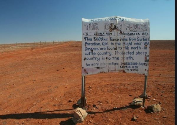 Old sign by the Dingo proof fence near Coober Pedy.