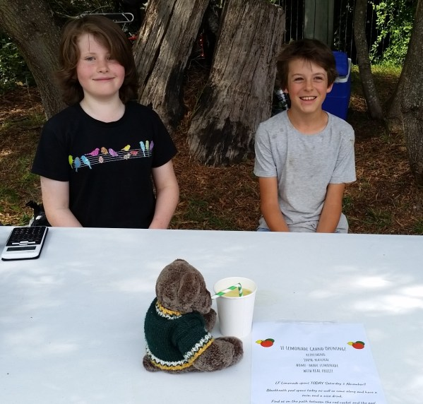 Enterprising youngsters at the Blackheath Rhododendron festival.