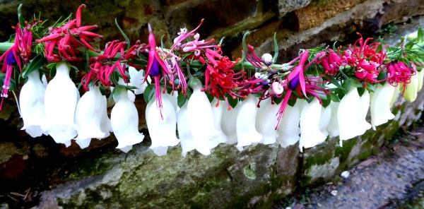 Christmas banner featuring digitalis