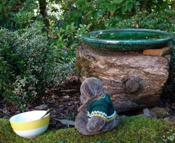 Editor Des finds an empty porridge bowl in the garden.