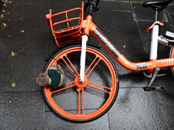 A bicycle mishap on my Sydney escape from lock-down.