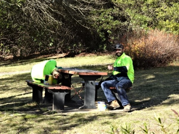 No seasonal confusion here. Time to spruce up Memorial Park ready for spring.