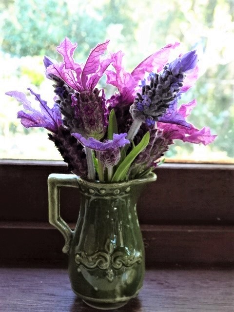 A mixed posy of lavender.