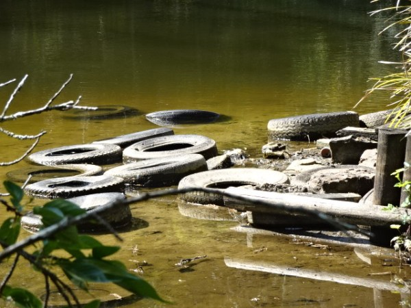 Old tyres in Blackheath duck pond.