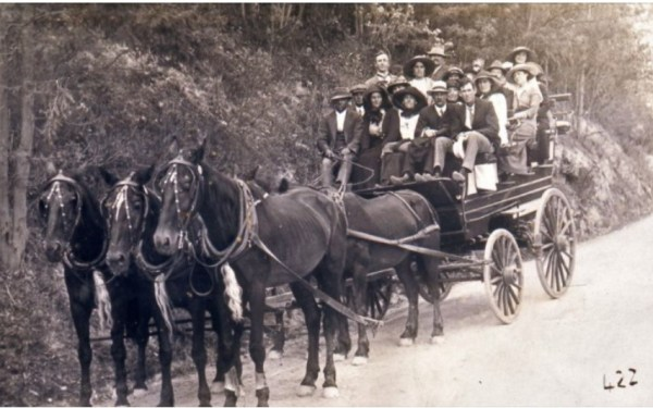 Robert Esgate is thought to be the driver of this excursion carriage enroute to Janolan Caves.