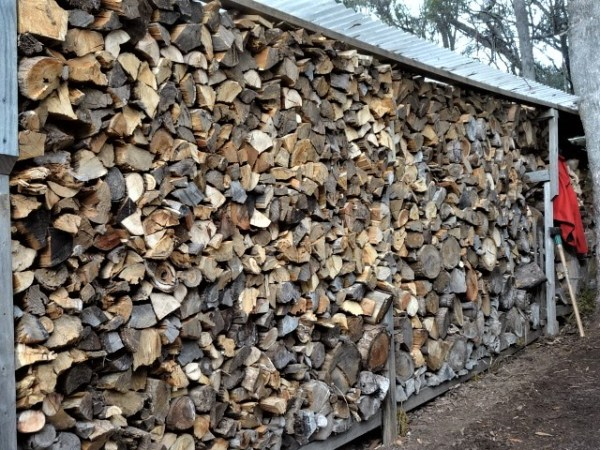 Enough wood in this stack for a few winters.