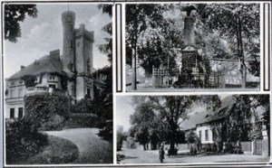 Kutschlau auf einer alten Postkarte