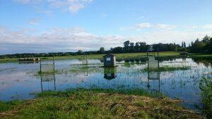 Überflutete Versuchsflächen des Instituts.