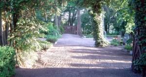 Blick über den Paulinenauer Friedhof.
