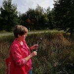 Sylvia Geisel zeigt uns eine Wegwarte. Foto: Sarah Vierjahn