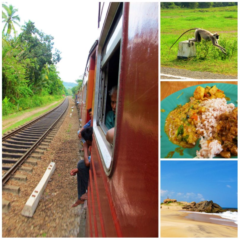 Backpacking Sri lanka includes train ride, curry, widlife and beaches