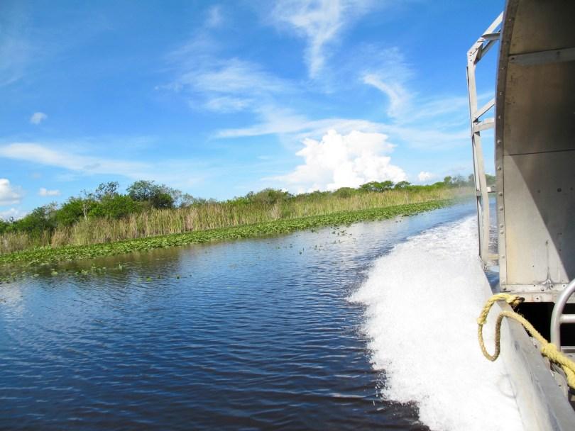 Everglades in Florida, Miami