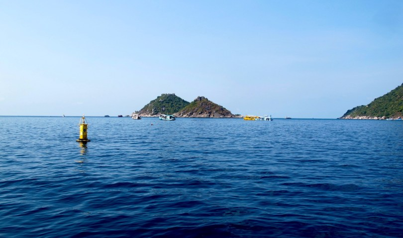 7 Great things to do in Koh Tao is diving