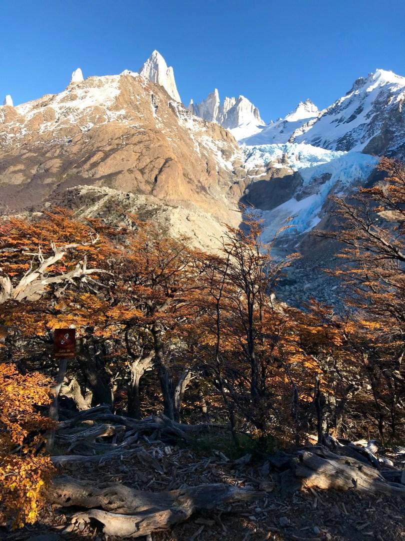 Piedras Blancas glacier in Patagonia Argentina, 2018