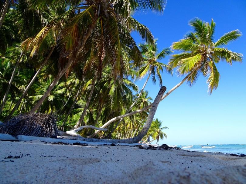 Playa Frontón in Las Galeras. The Dominican Republic 2019