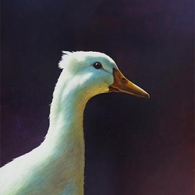 lilac paul james original duck artwork