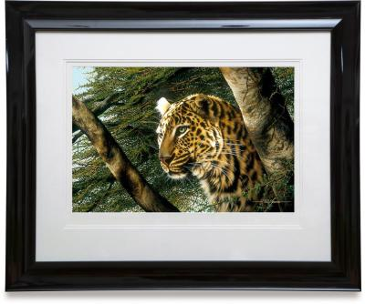 vantage point framed paper paul james