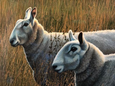 September Evening Paul James Original Artwork Sheep