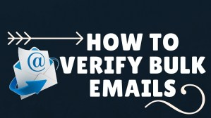 how to verify bulk emails