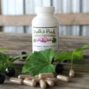Muscadine Supplements
