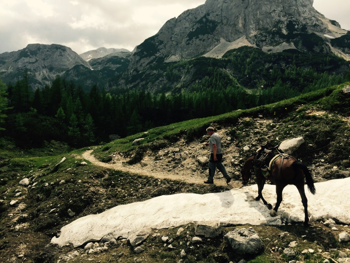 Pack horse crossing old snow in Triglav National Park, Slovenia