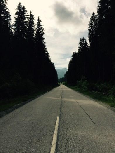 Pokljuka road