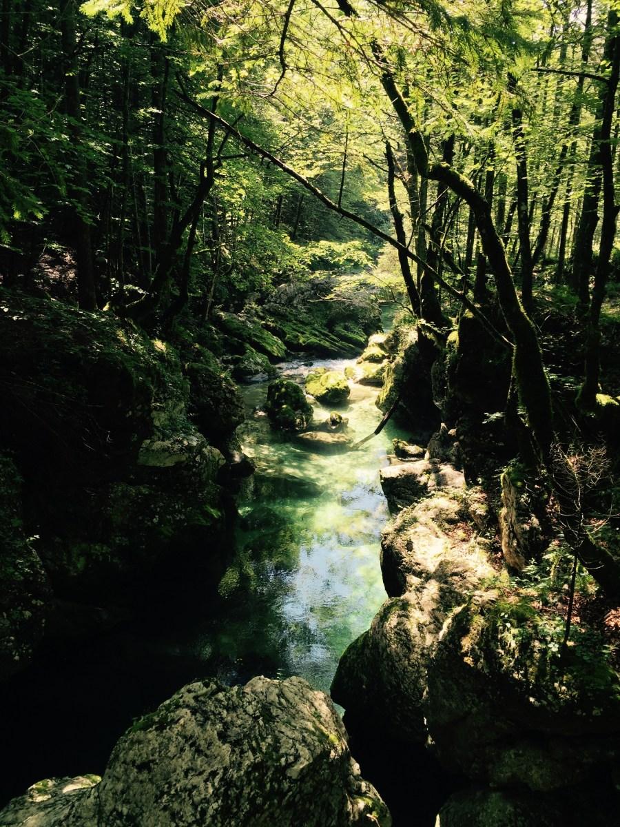Ribnica river, Triglavski National Park