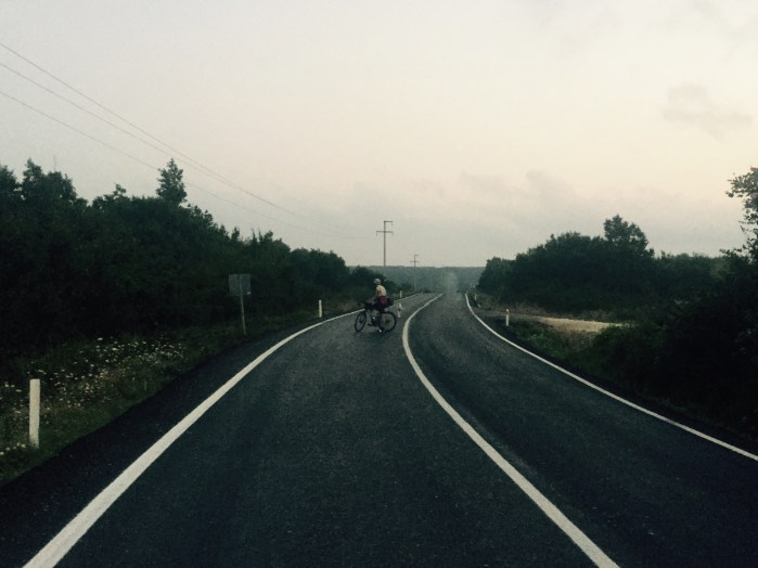 Early morning road, Gareth Bains and stray dog, Turkey