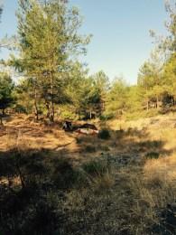 Camping spot, Turkey